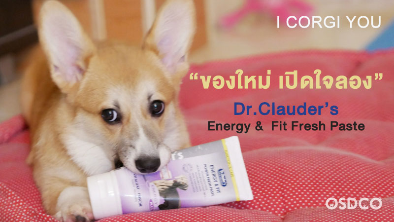 Dr.Clauder's Energy & Fit Fresh Paste