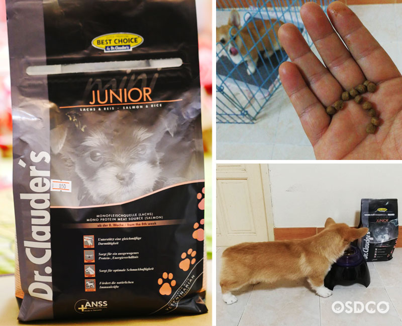 Dr.Clauder's Junior Small Breed สูตร Salmon & Rice